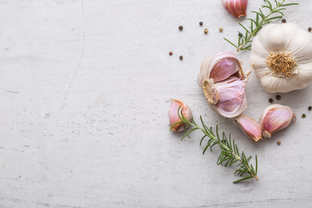 Garlic. Garlic bulbs. Fresh garlic with rosemary and pepper on white concrete board.